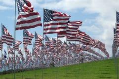 Honderden Amerikaanse vlaggen bij Gedenkteken 911 in Pepperdine, Californië Stock Afbeeldingen