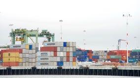 Honderden verschepende containerslijn de dokken bij de Haven van Oakland Stock Foto's