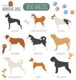 Hondrassen Werkend (lettend op) hond vastgesteld pictogram Vlakke stijl Royalty-vrije Stock Fotografie