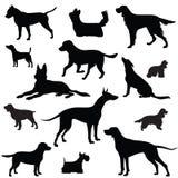 Hondreeks. Inzameling van silhouet Stock Foto