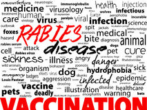 Hondsdolheid - virale ongeneeslijke ziekte van mensen en dieren De tekstblok van het gezondheidszorgwoord Stock Afbeelding