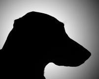 Hondsilhouet Stock Afbeeldingen