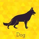 Hondsilhouet op driehoekenachtergrond Stock Foto's