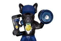 Hondsport selfie stock afbeelding