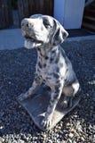 Hondstandbeeld Stock Afbeelding