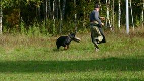 Hondtrainer op het werk in openlucht stock videobeelden