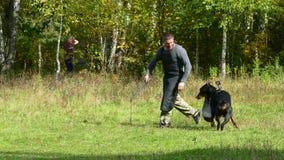 Hondtrainer op het werk in openlucht stock footage