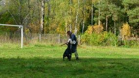 Hondtrainer op het werk in openlucht stock video