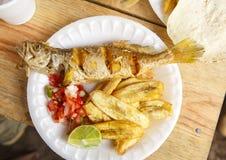 Honduransk mat Fotografering för Bildbyråer
