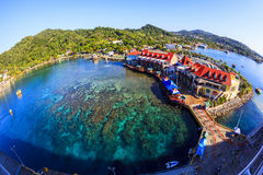 HONDURAS DE ROATAN ILAND Fotografia de Stock Royalty Free