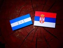 Honduras flag with Serbian flag on a tree stump isolated. Honduras flag with Serbian flag on a tree stump stock photos