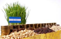 Honduras flagga som vinkar med bunten av pengarmynt och högar av vete Arkivbild