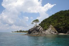 Honduras Island on the caribbean sea called Cayos chochinos. A natural reserve called cayos chochinos in the caribbean sea Honduras a tree growing in a small Royalty Free Stock Photography