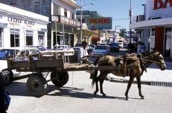 HONDURAS TELA DA AMÉRICA LATINA Foto de Stock Royalty Free