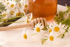 Honey. Italian honey and spring flowers Stock Images