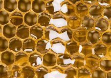Honey. Is a sweet and viscous fluid produced by bees and other insects from the nectar of flowers.  is significantly sweeter than table sugar and has attractive Stock Image