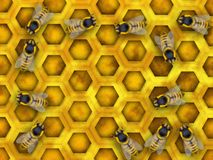 Honey. Bee plenty collecting nectar and making honey Royalty Free Stock Image