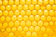 Honey. Fresh honey in comb. Background Royalty Free Stock Photos