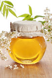 Honey. In a glass jar with white flowers Stock Images