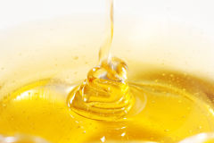 Honey. Dripping  close up Stock Photography