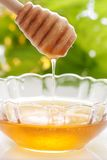 Honey. In a glass bowl close up Stock Images