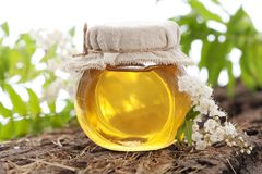 Honey. In a glass jar on a floor board Stock Images