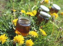 Honey. In jars in flowery meadow Royalty Free Stock Photo