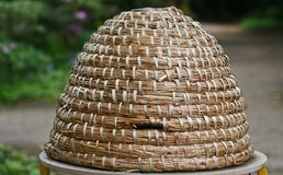 Honey. Historical honey basket used by beekeepers Stock Image