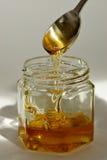 Honey. Dripping honey Royalty Free Stock Photo