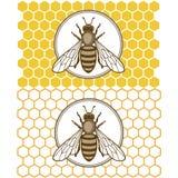Honey1 Arkivfoto