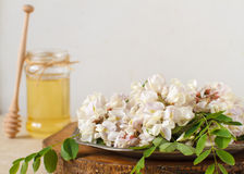 Honey with acacia flower Royalty Free Stock Images