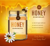 Honey Advertising Background fait maison illustration stock
