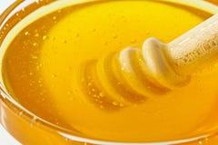 Honey against white background Royalty Free Stock Image