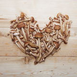 Honey agaric mushrooms in shape of heart on wooden background Royalty Free Stock Photos