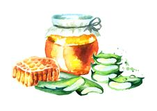 Honey and Aloe vera. Watercolor hand drawn illustration Stock Images