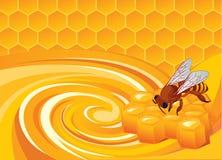 Honey aroma Stock Image