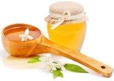 Honey of  azahar Stock Photography