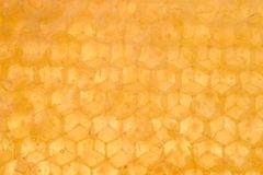 Honey Background. A backlit macro of natural comb honey with the wax capping removed Stock Image