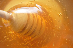 Honey background Royalty Free Stock Images