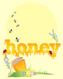 Honey Background Royaltyfri Bild