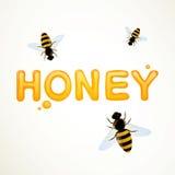 Honey Background Photographie stock libre de droits