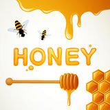 Honey Background Photographie stock libre de droits