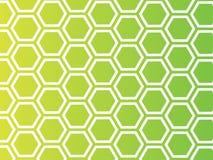 Honey Background. Designed using illustrator Stock Images