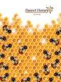 Honey Background med bin som arbetar på en honungskaka Royaltyfria Bilder