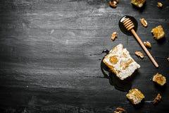Honey Background Naturlig honunghårkam och en träsked Arkivbilder