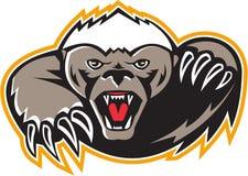 Honey Badger Mascot Claw Royalty Free Stock Photos
