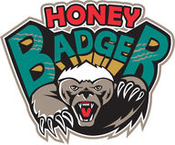 Honey Badger Mascot Front Royalty Free Stock Photography