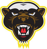 Honey Badger Mascot Head Stock Photos