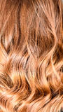 Honey Balayage Hair Royalty Free Stock Photos