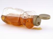 honey bear. Fotografia Stock